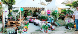 The Garden Show & Spring Festival set to celebrate its 16th edition